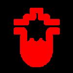 נורית חיווי תקלה fuel filter אדומה בדגמי יונדאי בילוך שישי
